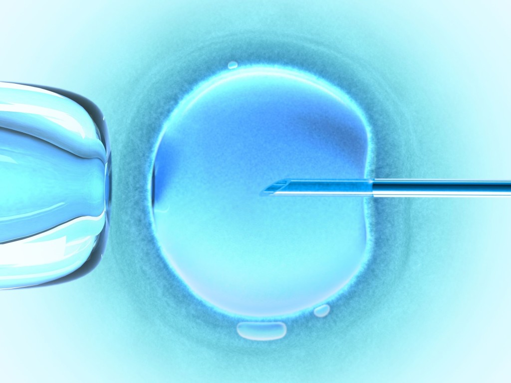 IVF Facts - What Is IVF?